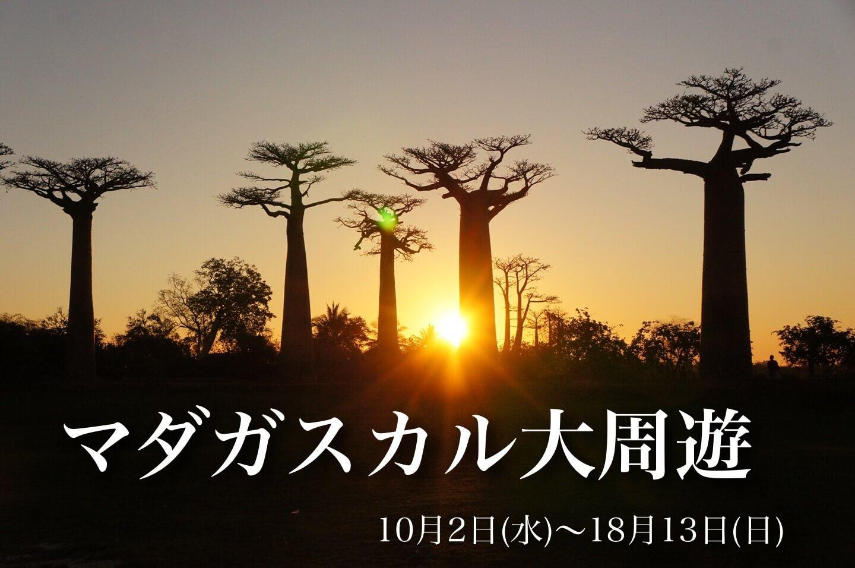 世界遺産ツィンギーを訪れる マダガスカル大周遊満喫の旅【12日間】