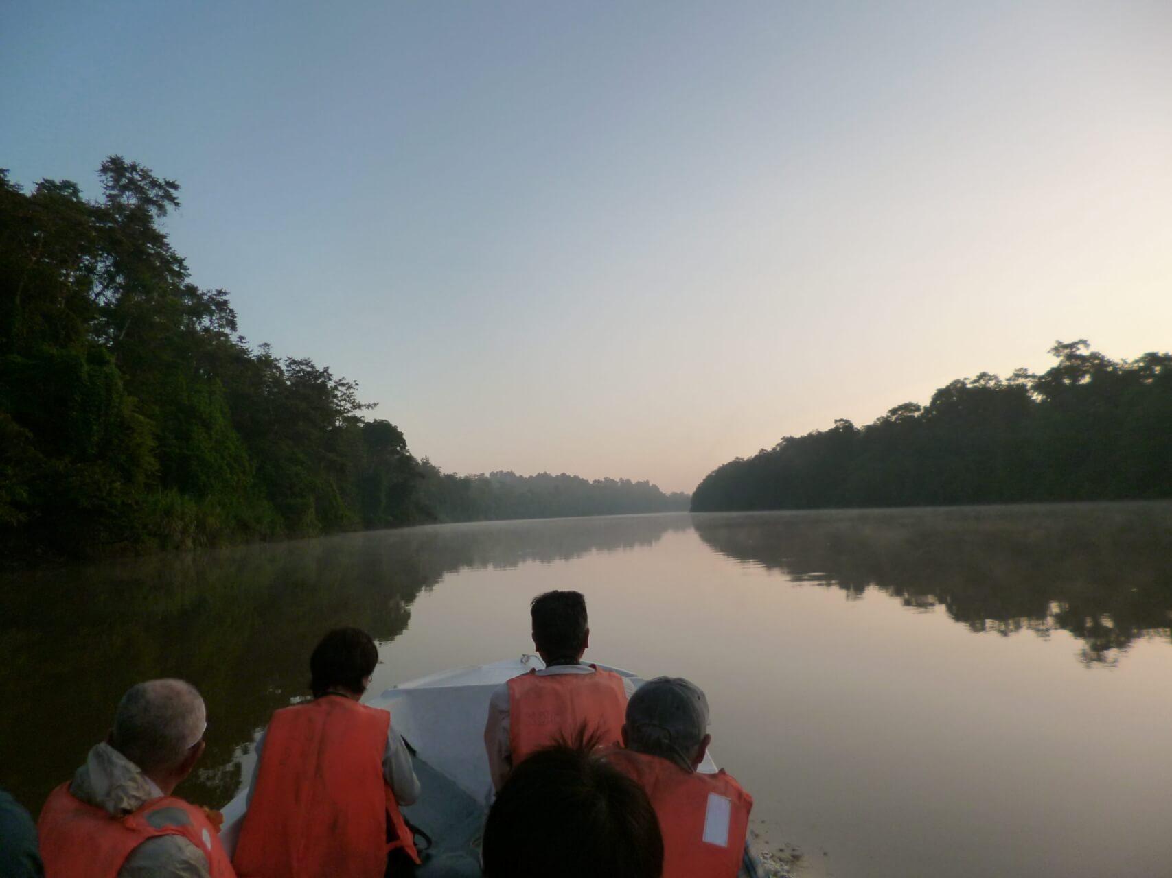 キナバタンガン川探検と野生動物の宝島ボルネオ  とことん満喫の旅