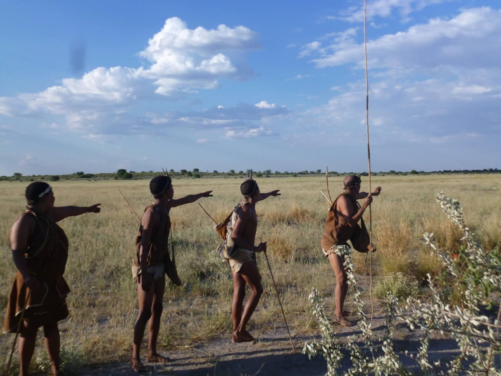 ボツワナのブッシュマンとカラハリ・ライオンに出会う カラハリ砂漠の旅
