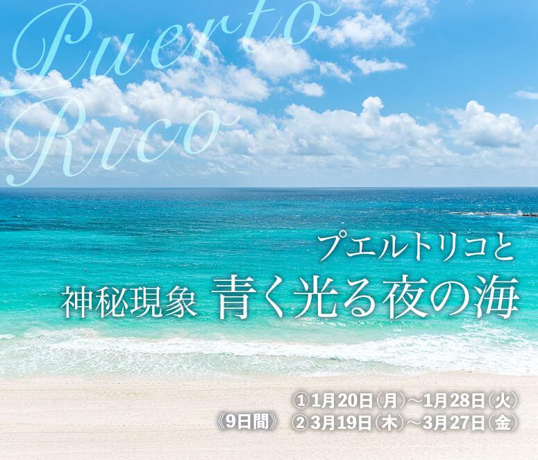 プエルトリコと 神秘現象 青く光る夜の海【9日間】