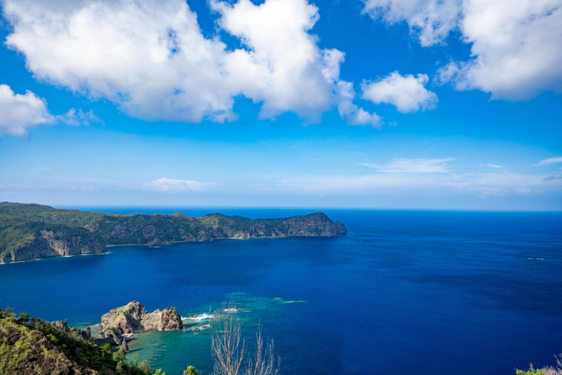 【国内・離島旅行】世界自然遺産 母島にも泊まる ザトウクジラウォッチングと小笠原諸島大自然満喫の旅