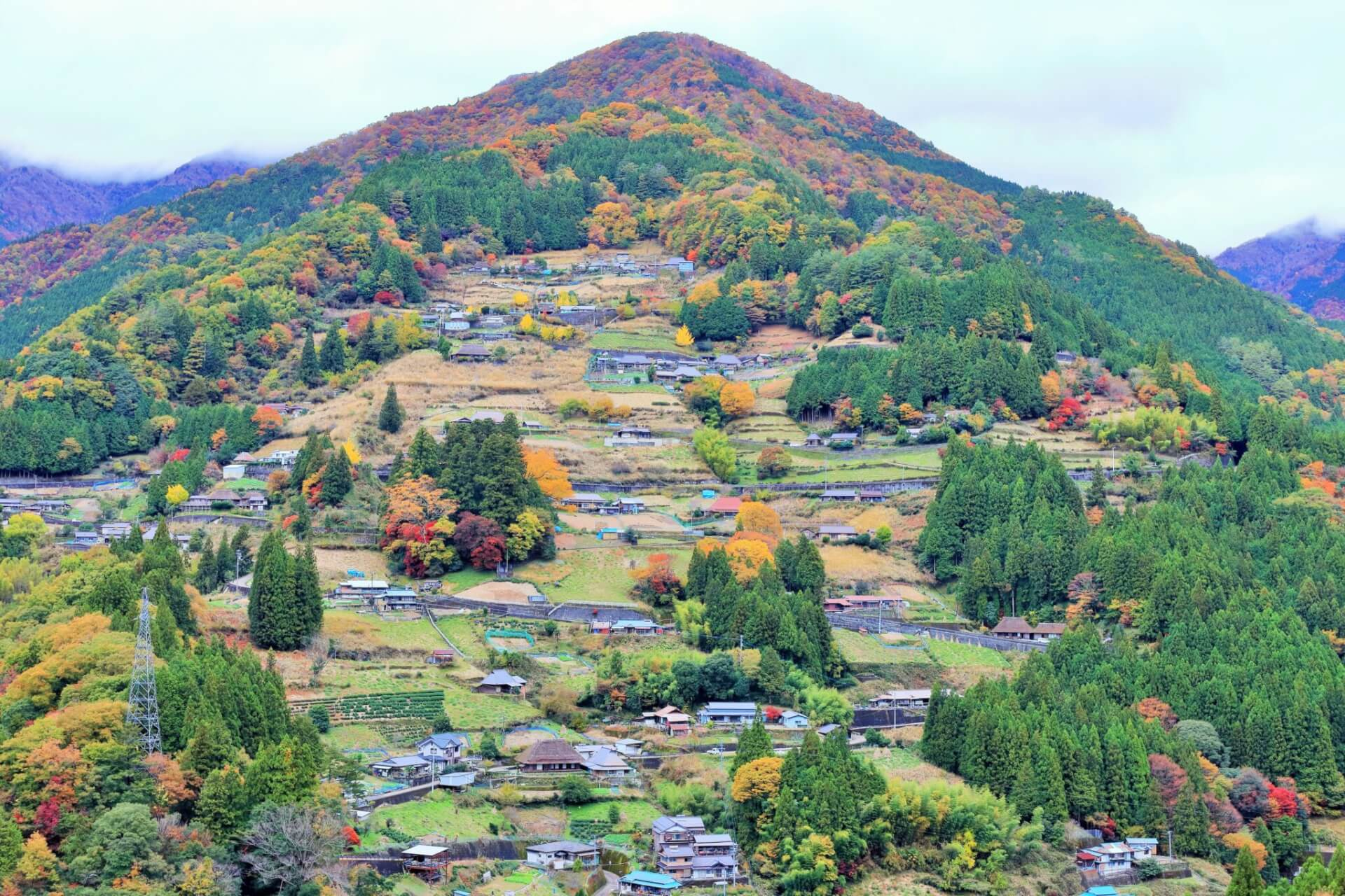 【国内・四国】 「日本で最も美しい村」上勝町と紅葉に染まる奥祖谷の桃源郷 徳島 里山スローツーリズムの旅